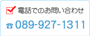 089-927-1311